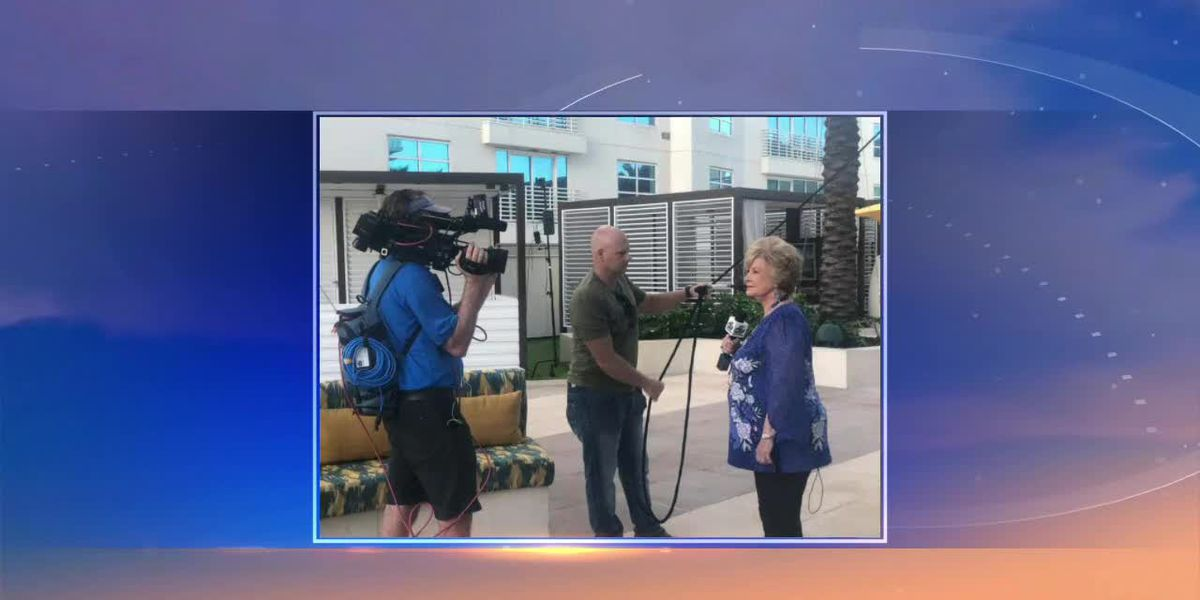 Linda Shares How She Experienced the Hard Rock Wallenda Walk in Person | Suncoast View
