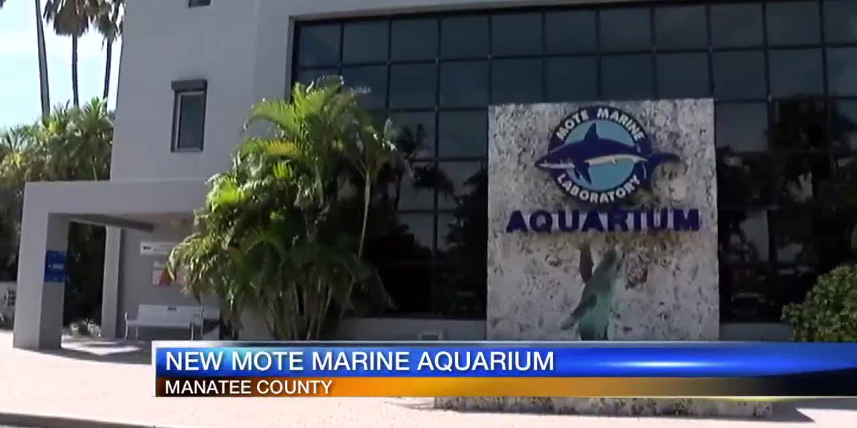Manatee County planning to help fund new aquarium in Sarasota County