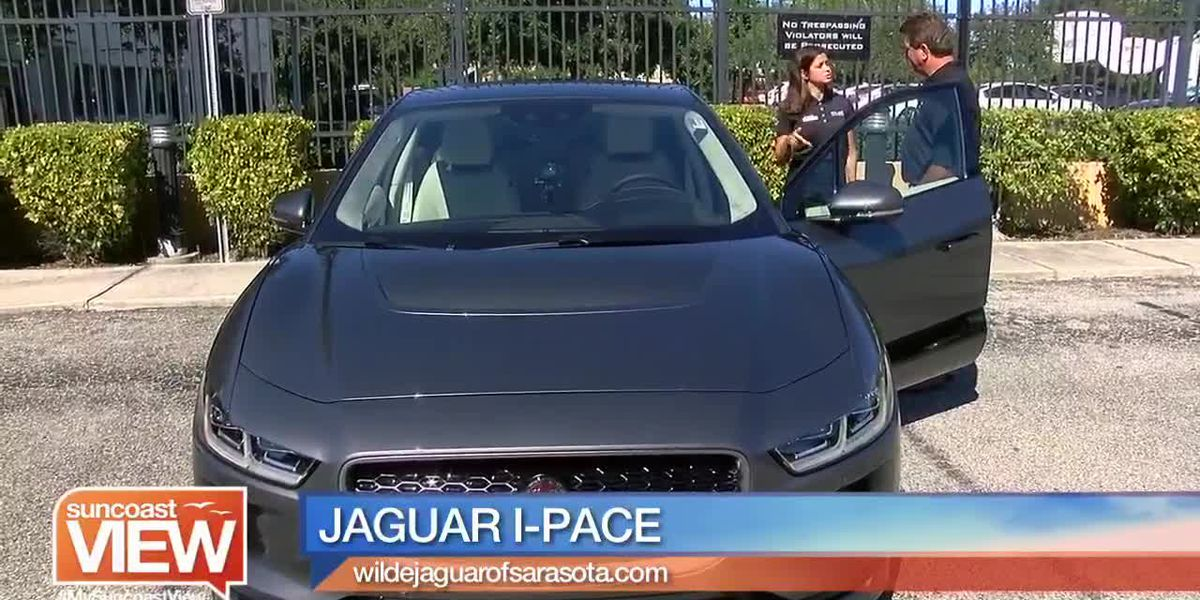 Bob Harrigan takes the Jaguar I-Pace for a Ride | Suncoast View