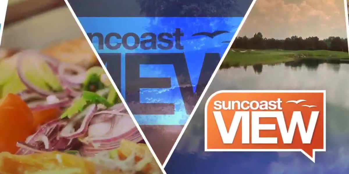 Suncoast View 5/10/19 - Part 2