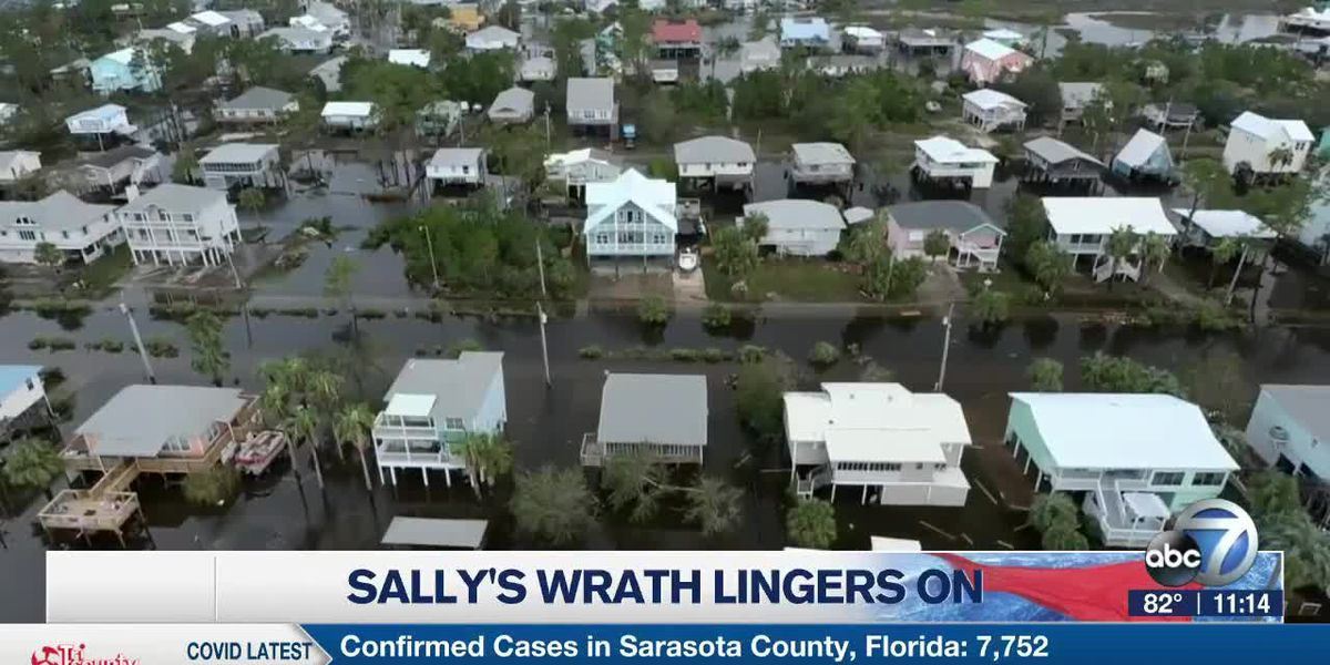 Sally's Wrath Lingers On