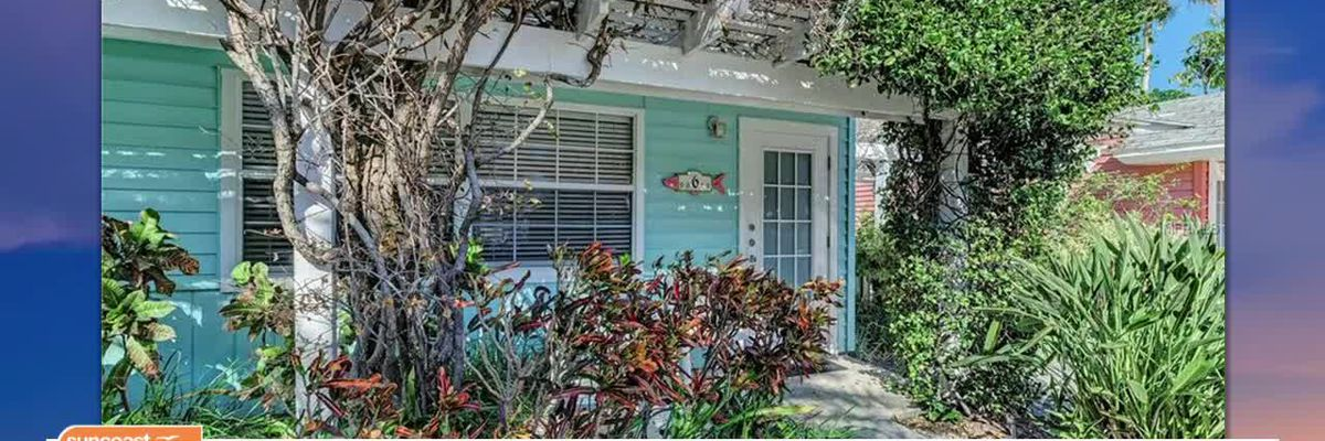 Realtor Andrew Haddad Brings Bungalow-Style Homes in Suncoast for Sale   Suncoast View