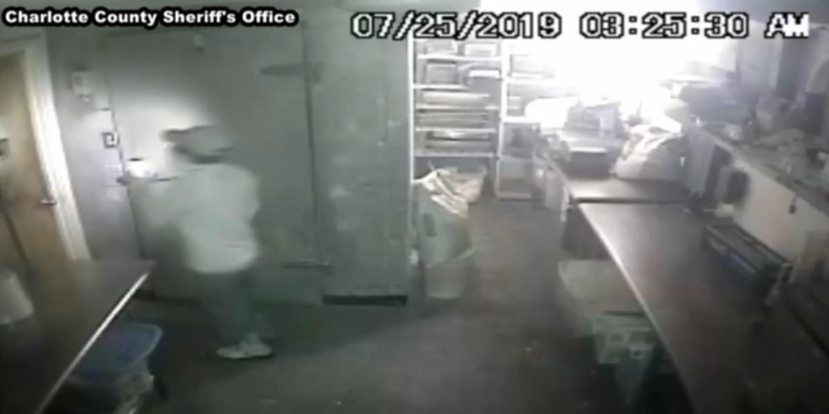 Several Englewood businesses burglarized, caught on camera