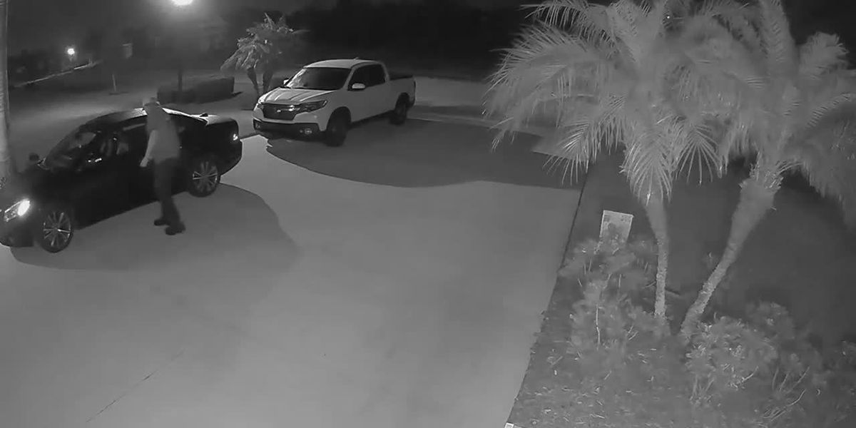 VIDEO: Man seen trying to open vehicles in Manatee County