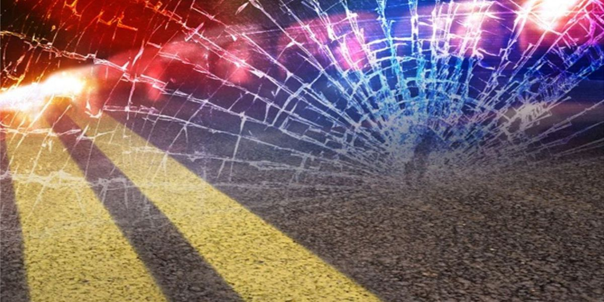 North Port man killed in bicycle accident in Sarasota County