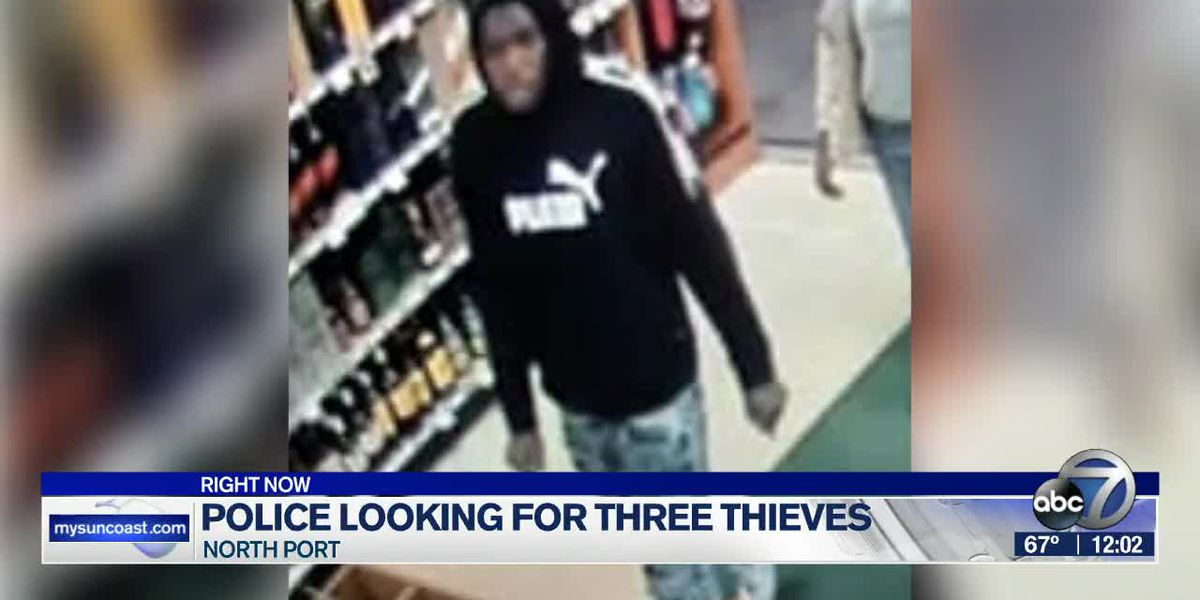 Police search for thieves