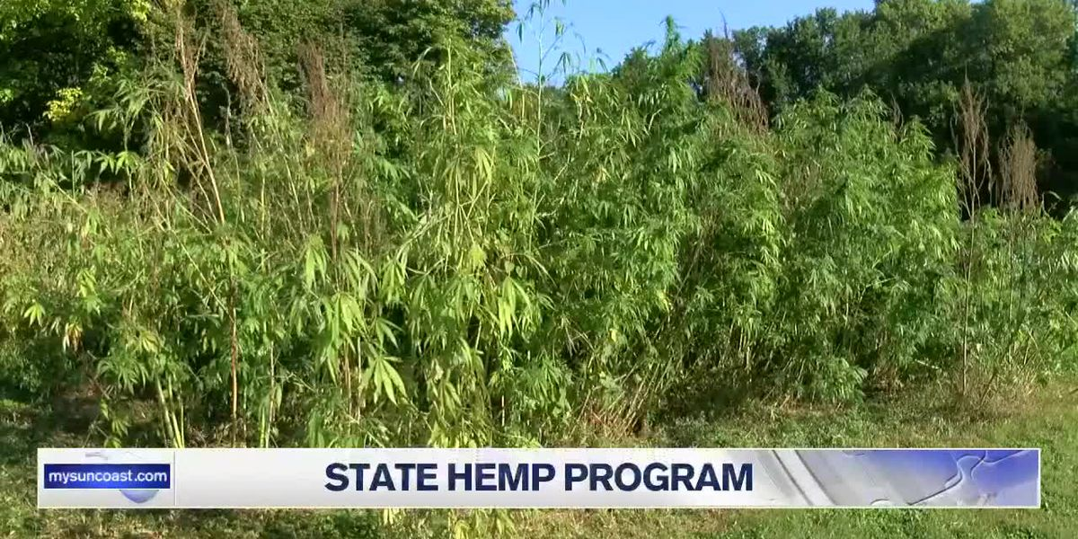Florida state hemp program