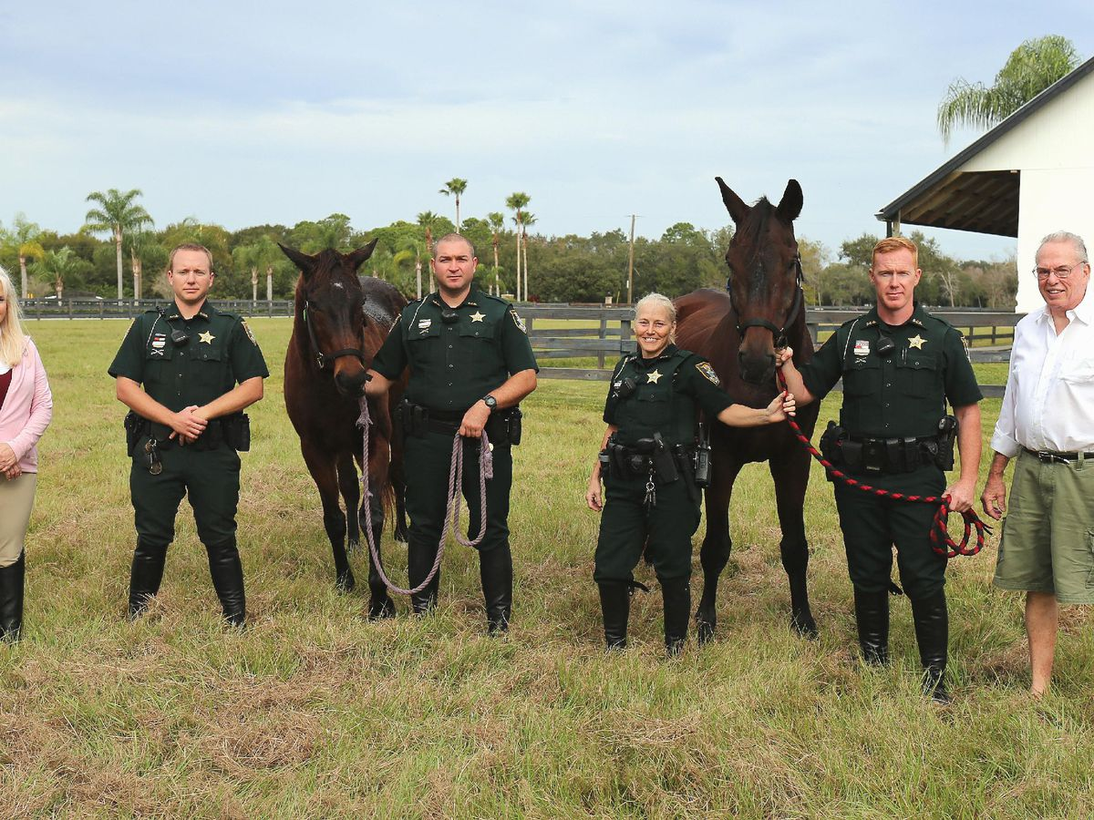 Mounted Patrol Unit retires two horses