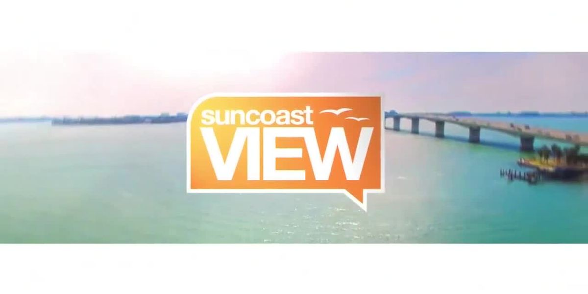 Suncoast View 11/6/19 - Part 2