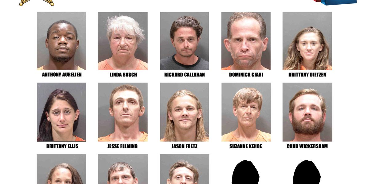 15 people arrested, accused of stealing from stores in Sarasota County