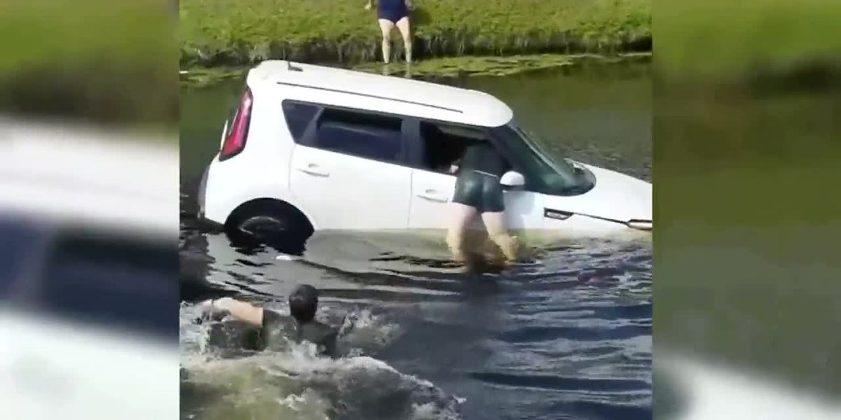 VIDEO: Man rescues woman from car sinking into water of Florida canal