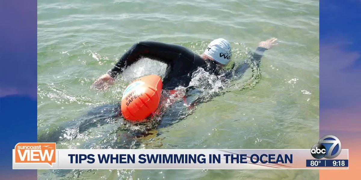 Ocean Swimming Safety (Part 1) | Suncoast View