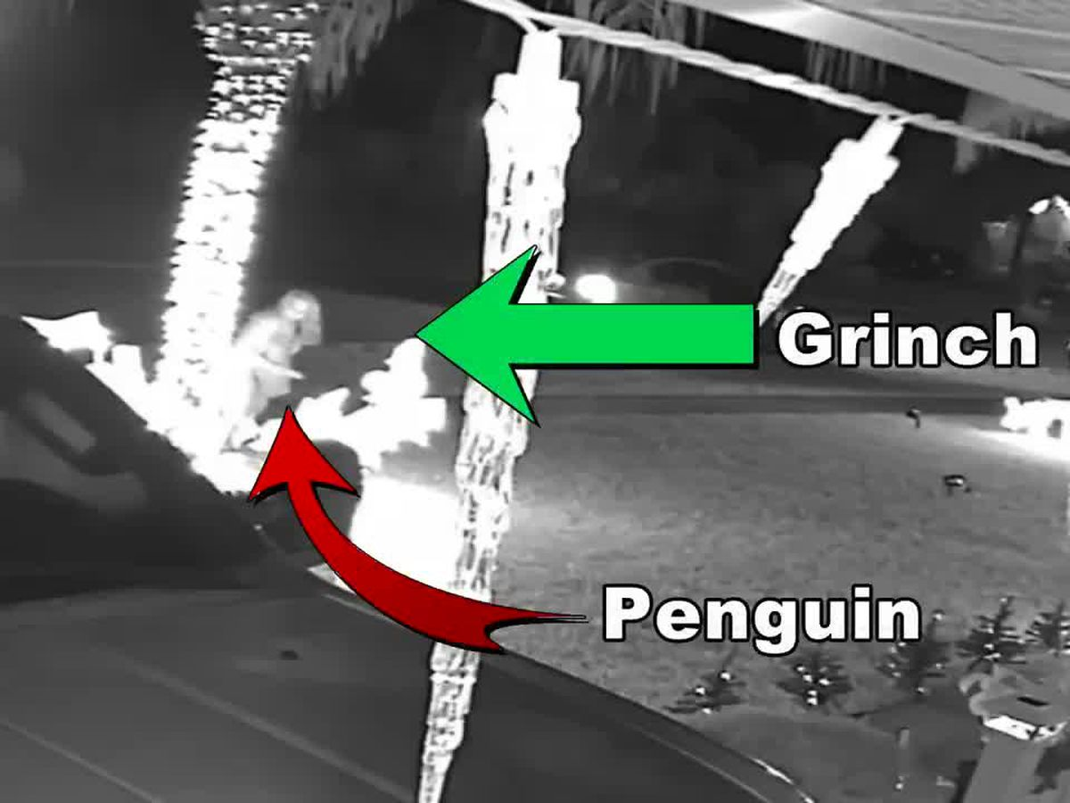 VIDEO: Grinch steals Christmas decoration from front of North Port home