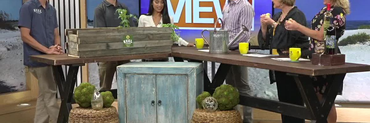 Keel Farms Previews its Fall Harvest Day with a Fun Gardening Demonstration | Suncoast View