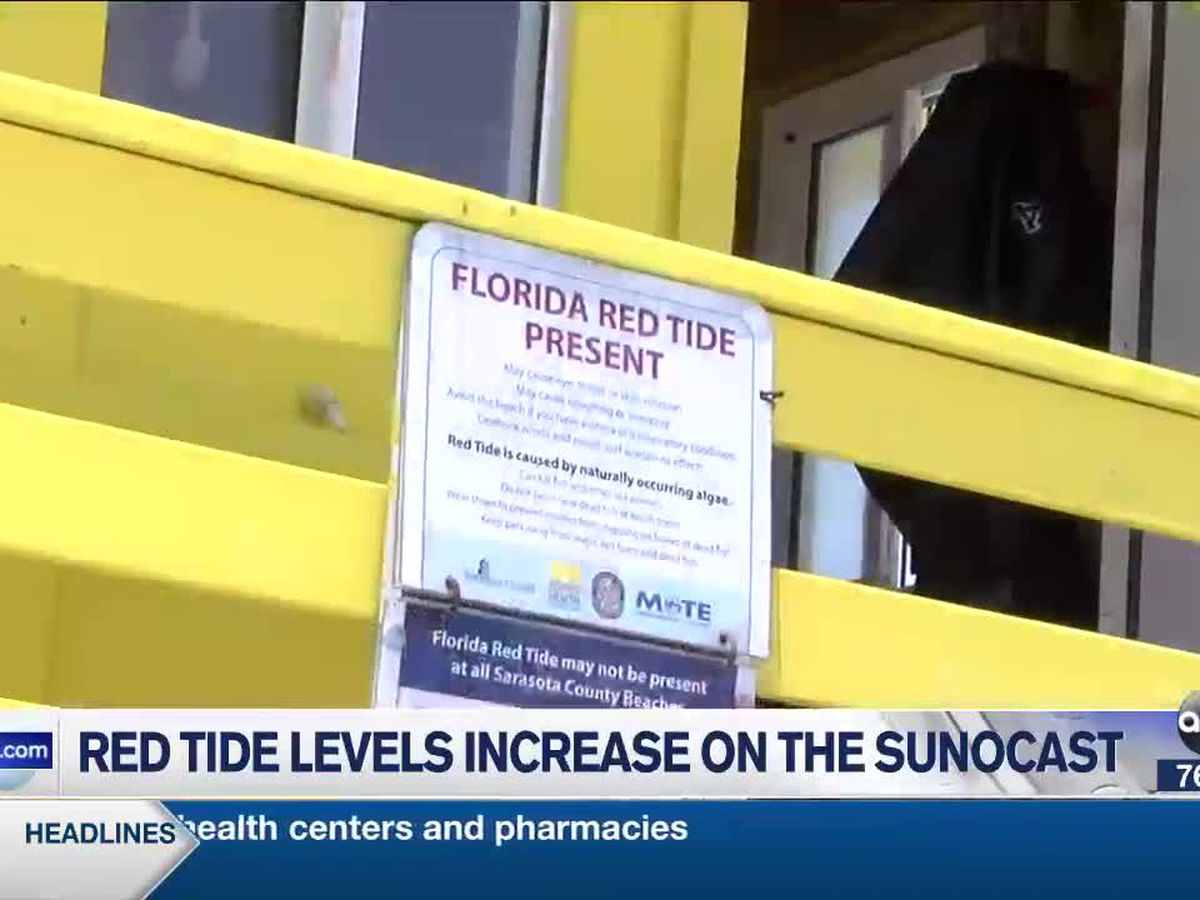 Red tide is on the rise along Siesta Beach