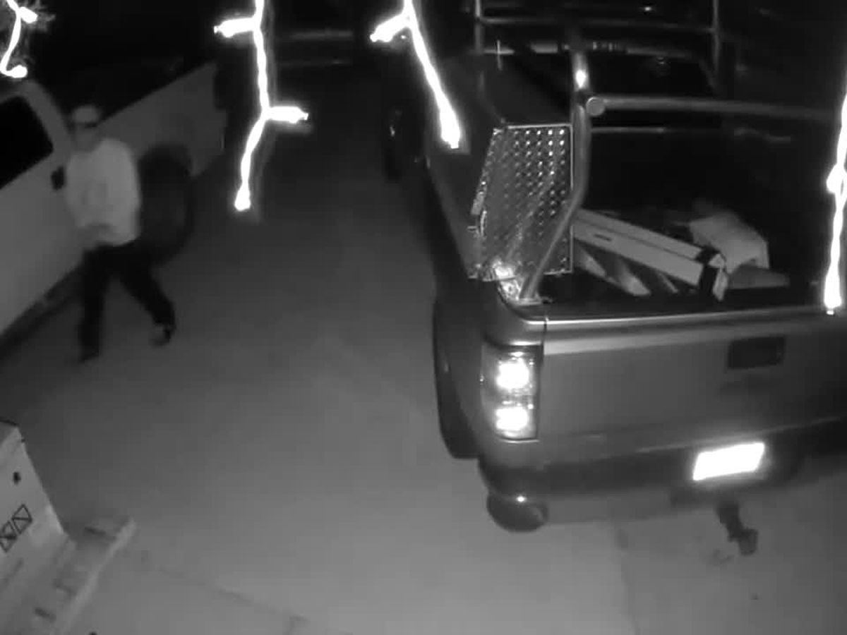 VIDEO: Suspects trying to enter vehicles in Charlotte County