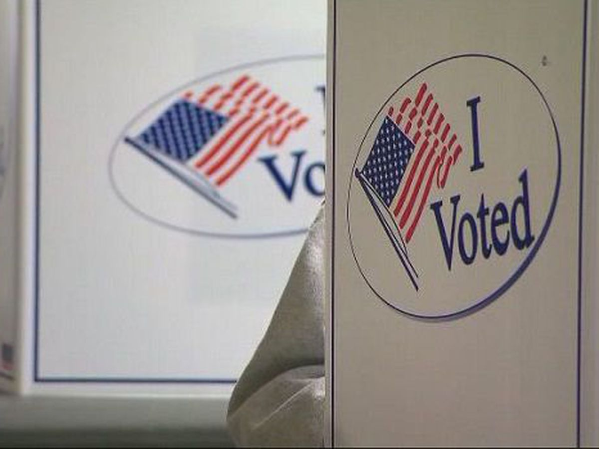 Amendments 1, 3 & 4: Impacting future voters and elections