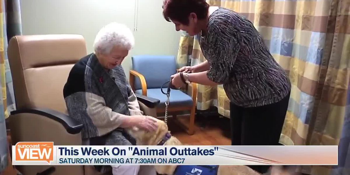 "Marsha Previews this Weekend's ""Animal Outtakes"" 