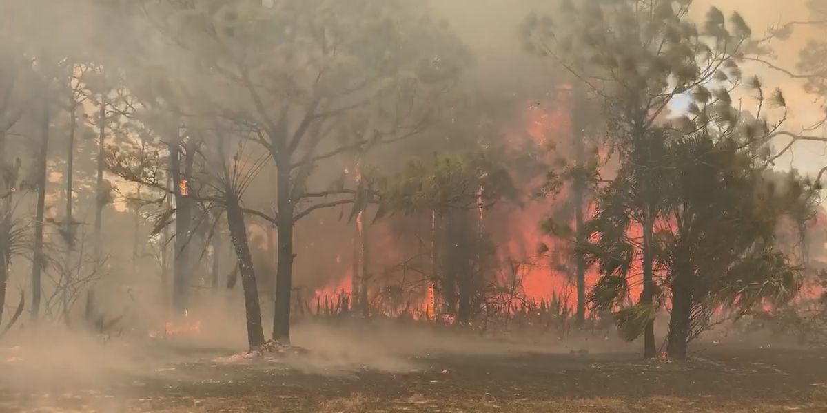 Large brush fire threatens homes and forces evacuations in Charlotte County