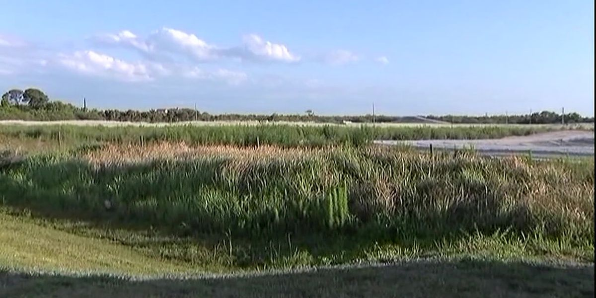 Controversial Aqua By the Bay gets go-ahead from Manatee County Judge