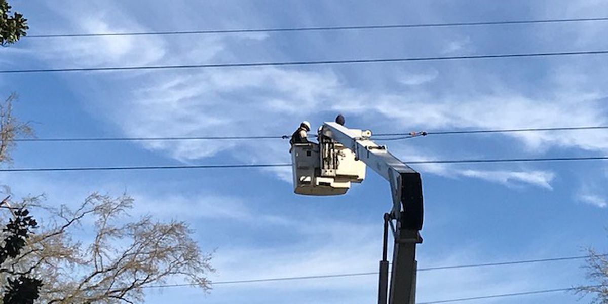 Man electrocuted trying to remove bird from power line
