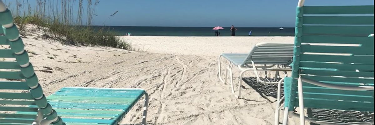 Video: Business look to locals during red tide bloom