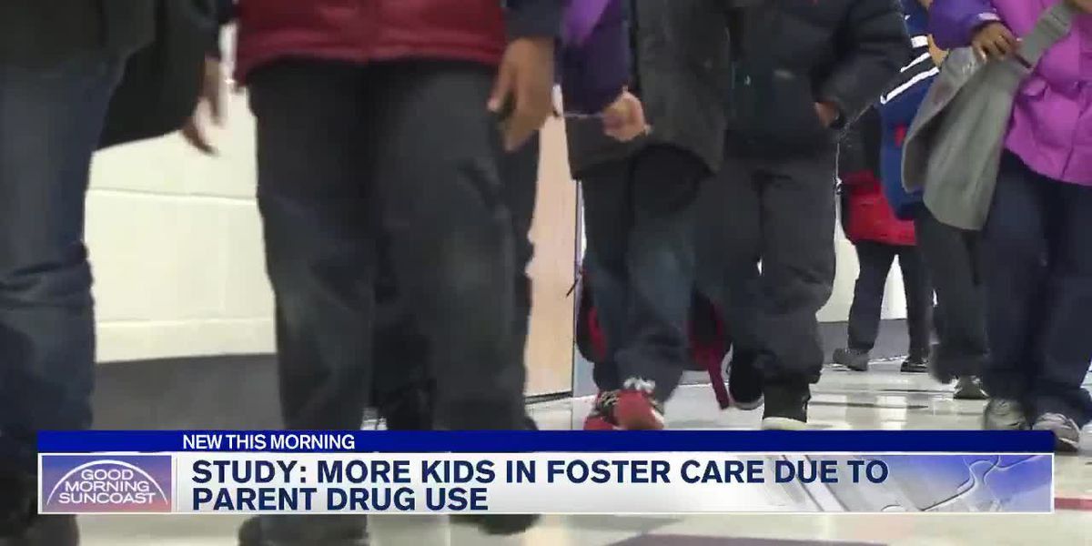 Study finds more kids in foster care due to parental drug use