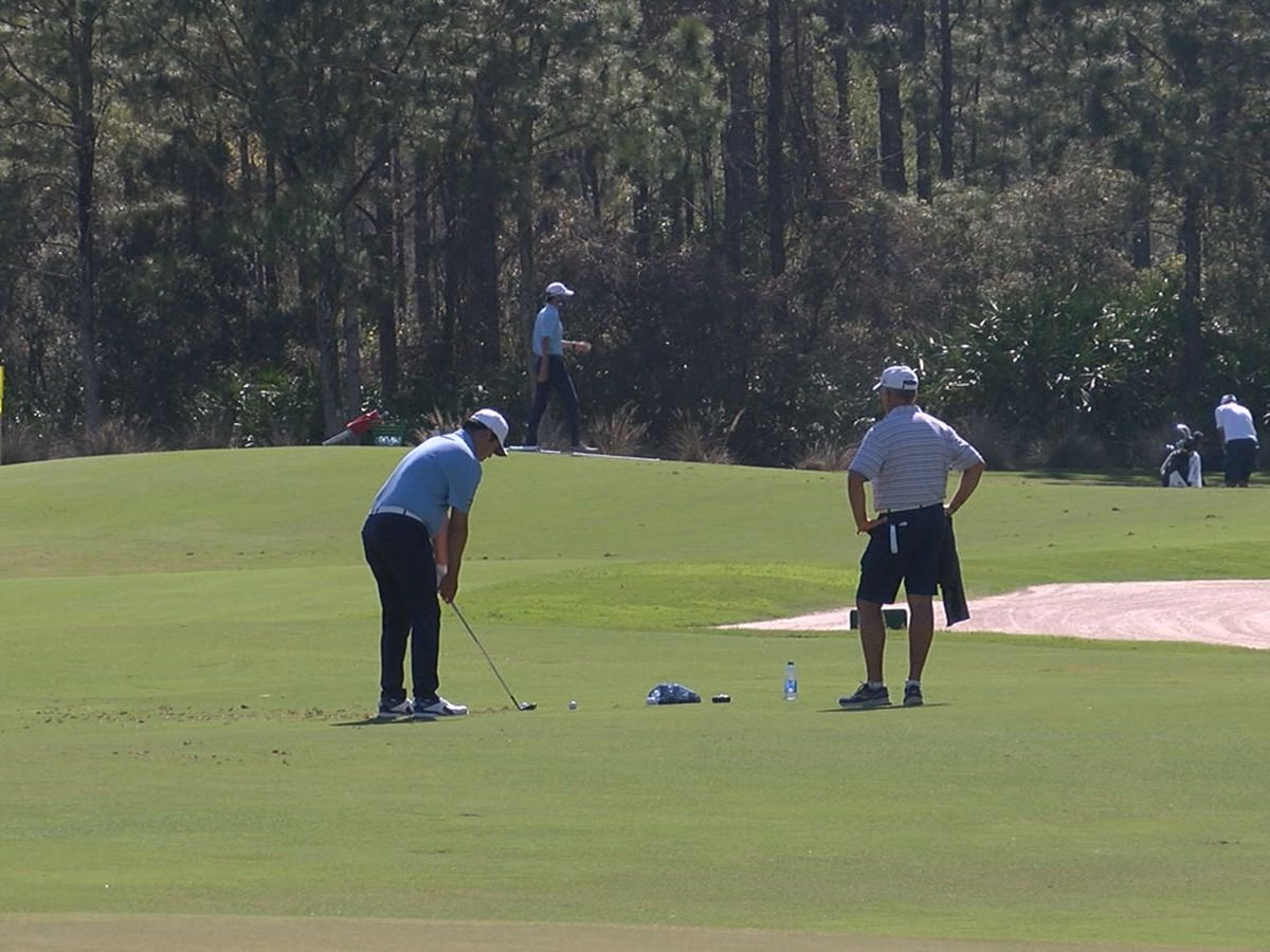 Golfers and Suncoast residents react to vehicle crash involving Tiger Woods
