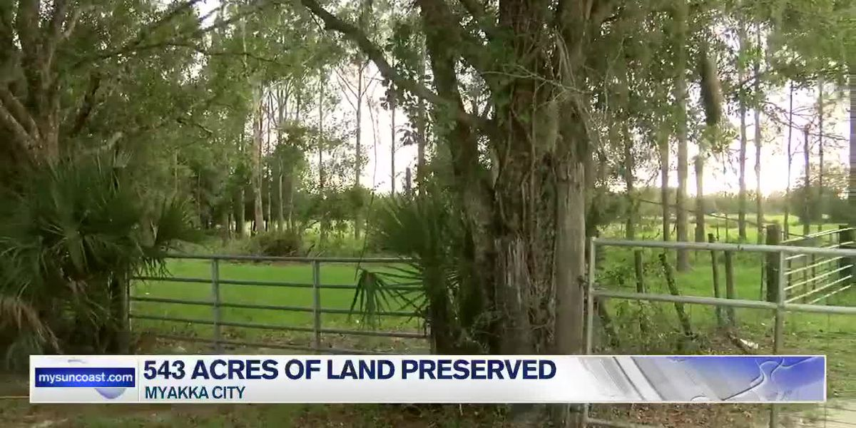 543 Acres of Land Preserved in Myakka City