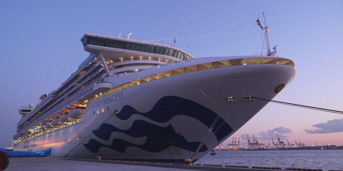 Bookings increase as cruises set to sail again soon