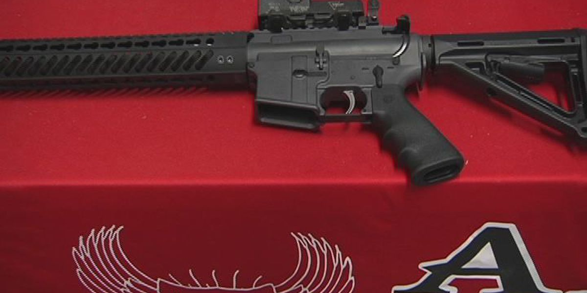 Florida House votes down motion to take up weapons ban