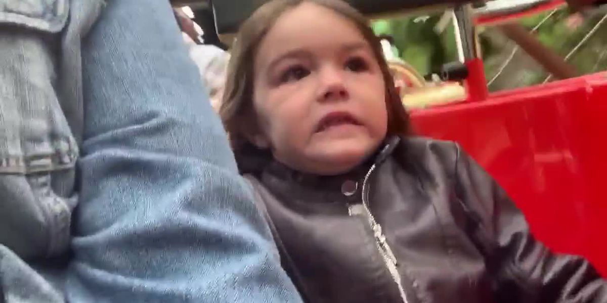 WATCH: 4-year-old excited, horrified, then thrilled with first roller coaster ride