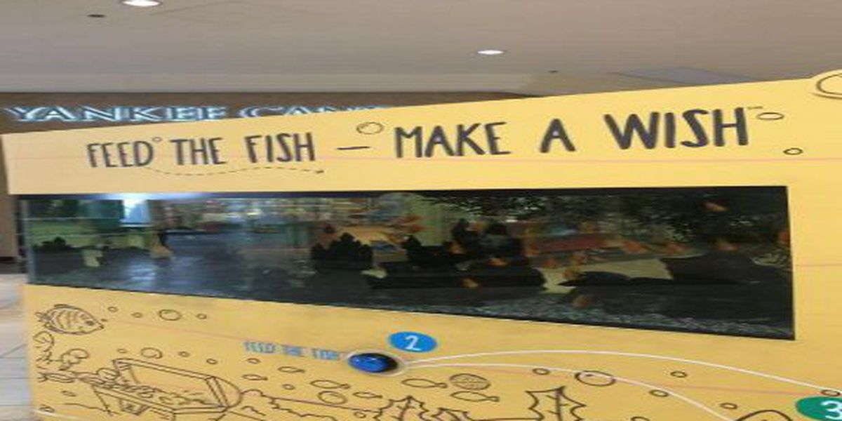 PETA complaint causes Westfield Mall to remove vending machine fish tank