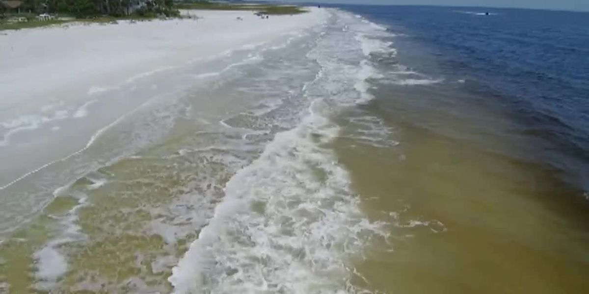Florida waves appear to finally be free of toxic red tide