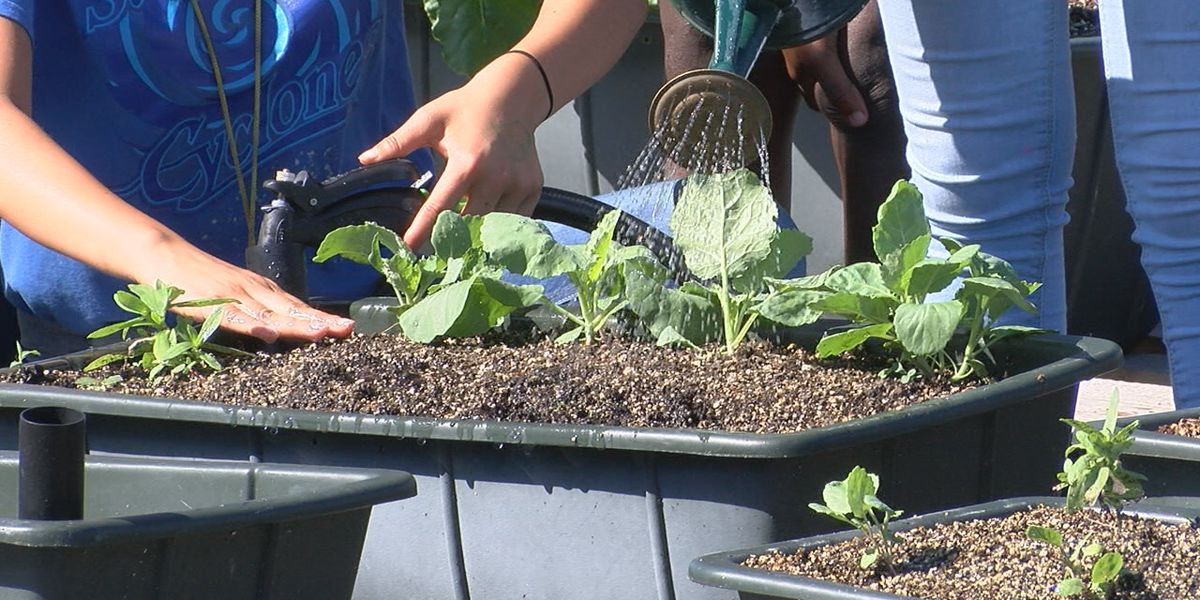 Publix employees help grow Sugg Middle School's agriculture program as part of Day of Caring