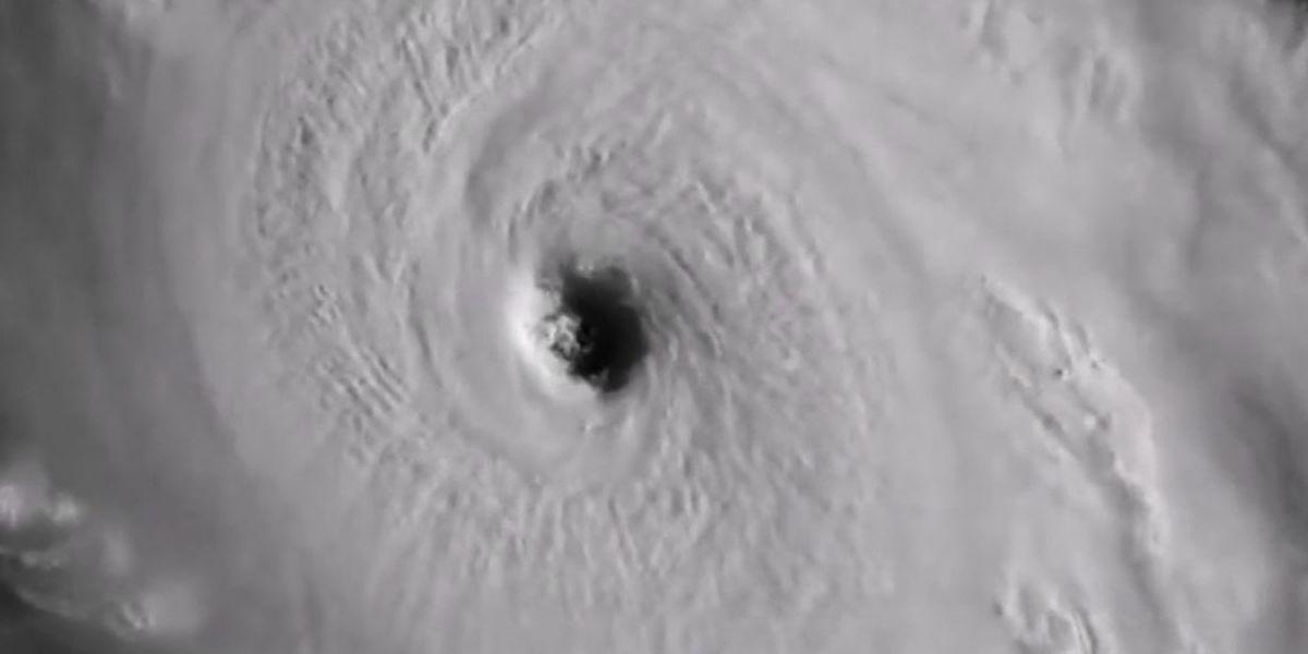 Hurricane prep tax 'holiday' underway