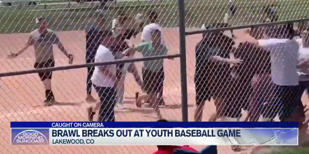 Brawl Breaks Out at Colorado Kids Baseball Game