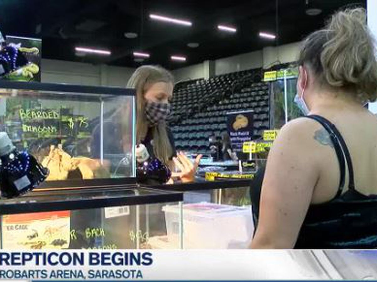 Repticon opens doors to reptile lovers on the Suncoast for this weekend