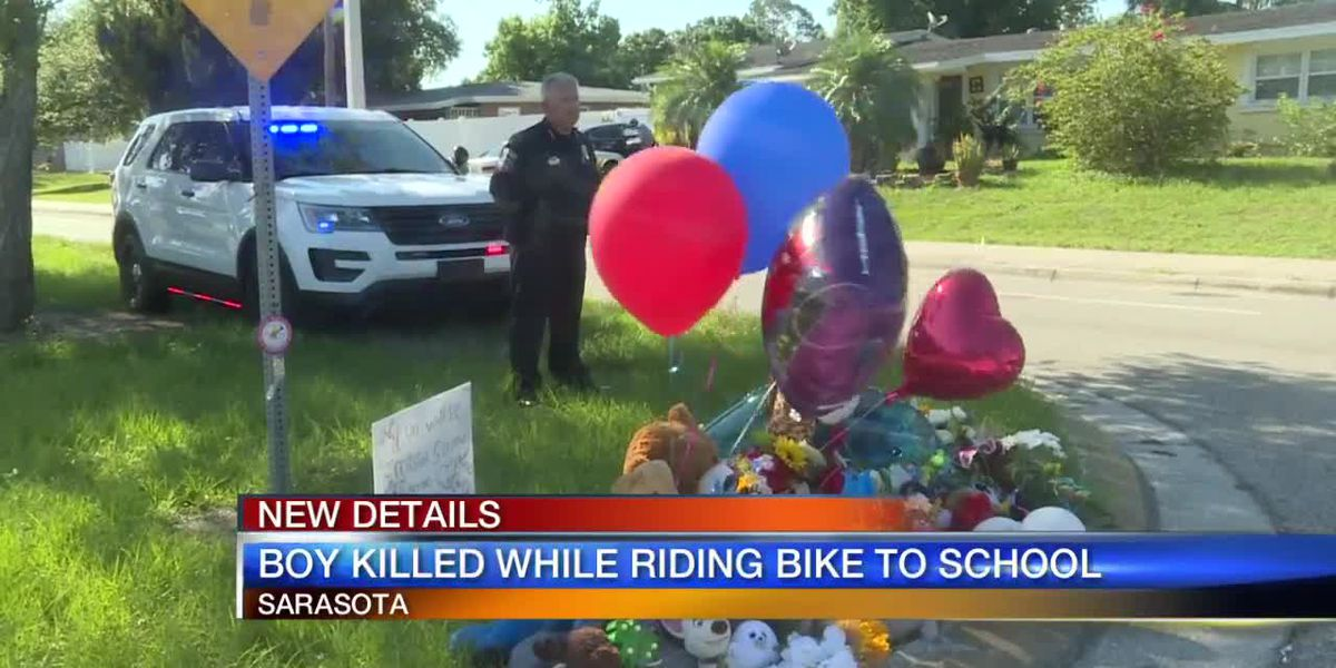 New details on boy killed while riding bike to school