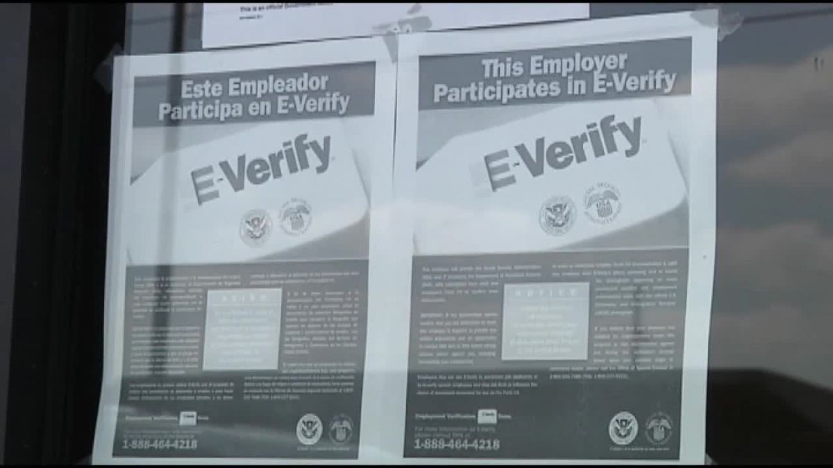 """Sponsor of Florida E-Verify bill says changes made by Senate committee make it a """"mockery"""""""