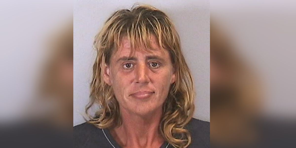 Deputies: Aggressive panhandler threatened driver who wouldn't give her a dollar