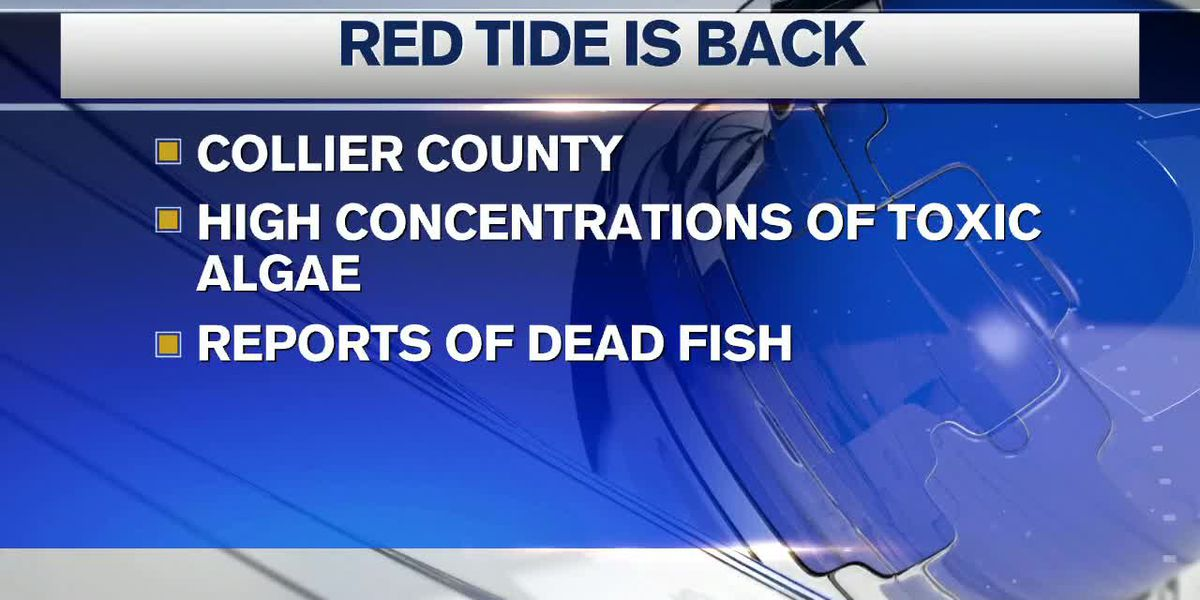Red Tide Returns to Collier County
