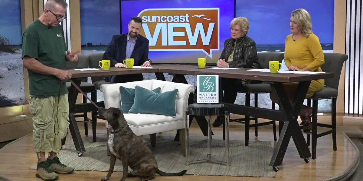 K9 Korral & The Canine Good Citizens | Suncoast View