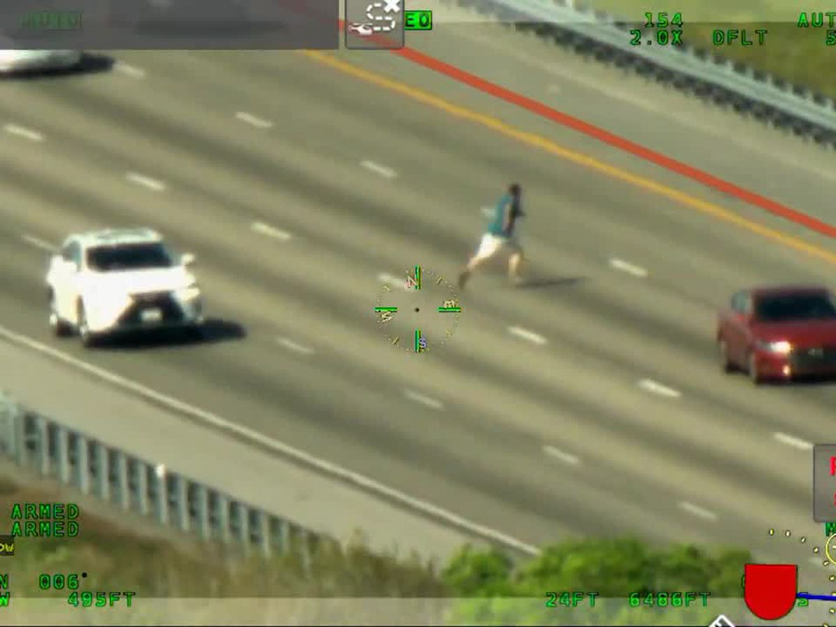 VIDEO: Convicted felon runs across I-75 while fleeing deputies