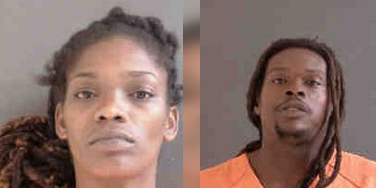 Two people arrested after fight in North Port