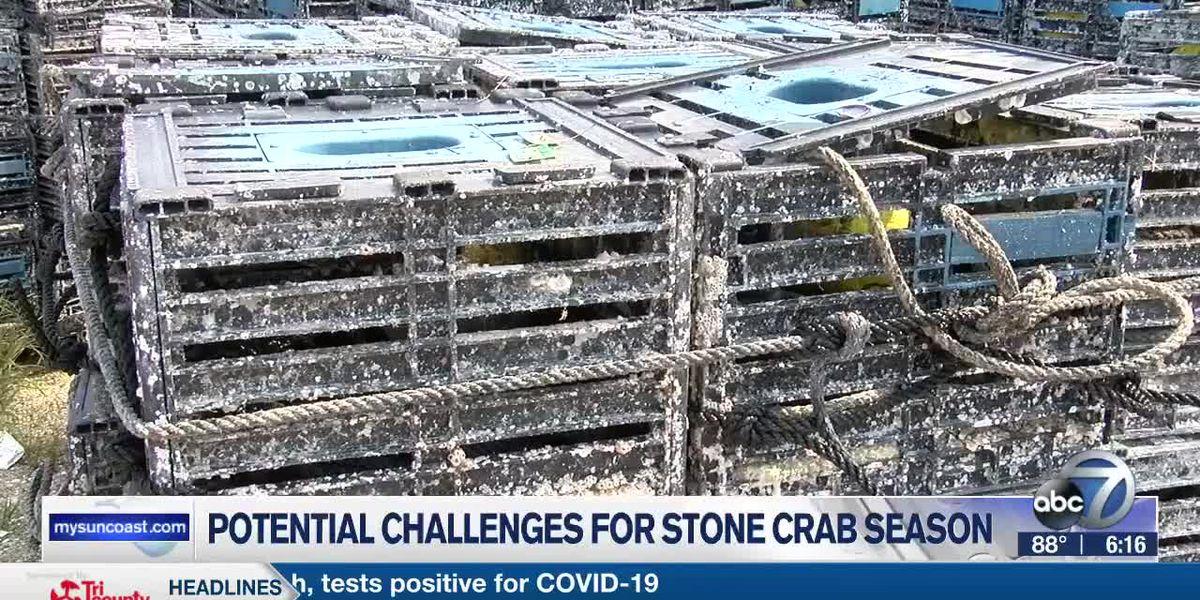Stone crab season opener on Thursday, fishermen hoping for a prosperous season amid pandemic