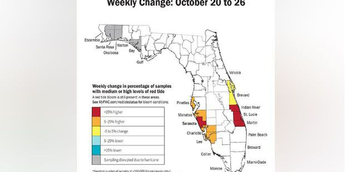 RED TIDE REPORT: Higher red tide concentrations surface on the Suncoast