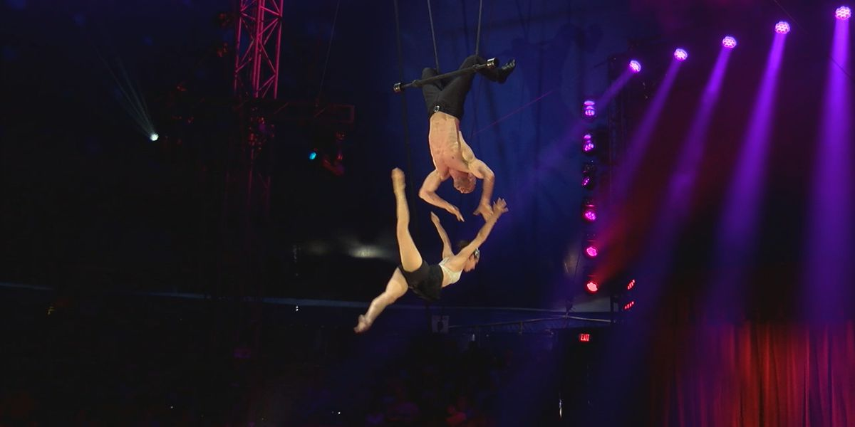 Circus Sarasota is back in town for its 23rd show