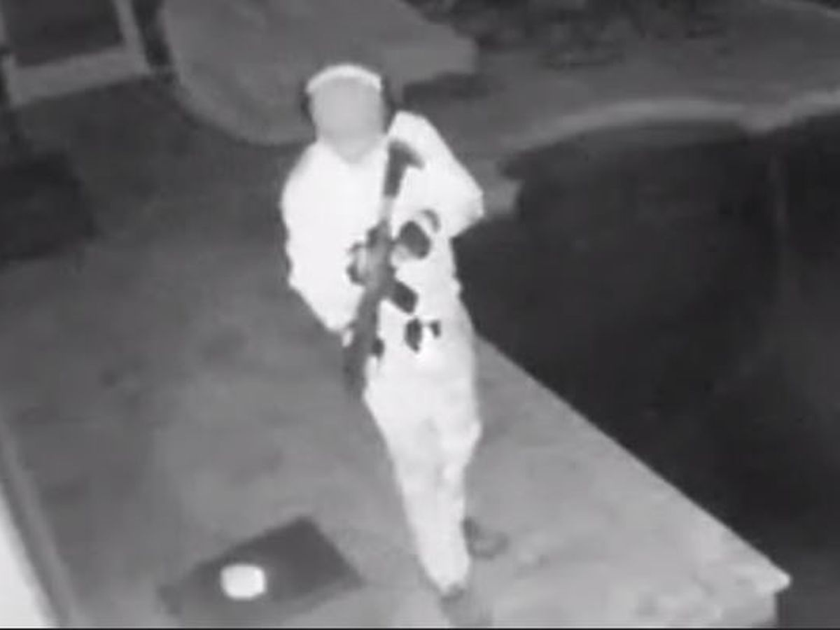 Manatee County Sheriff searching for masked suspect who broke into pool with rifle