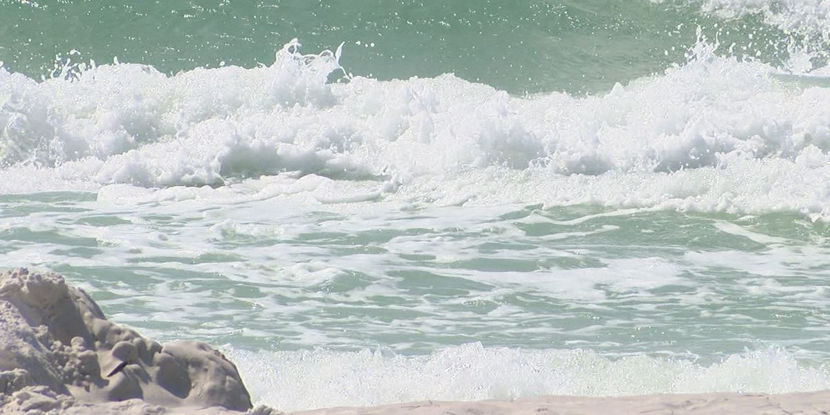 Sarasota County tourism and health officials look ahead to spring break